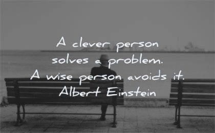 albert einstein quotes clever person solves problem wise avoids wisdom bench
