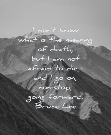 bruce lee quotes dont know what meaning death afraid die stop going forward wisdom mountains nature landscape