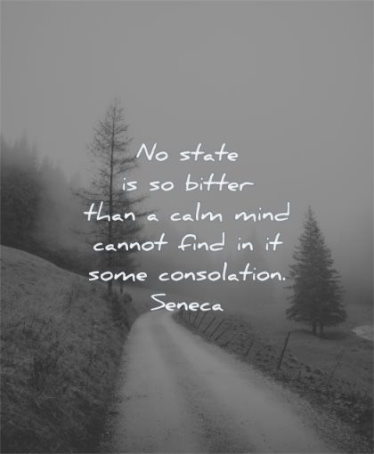 calm quotes state bitter mind cannot find some consolation seneca wisdom nature path road trees