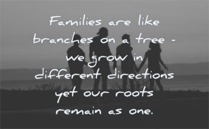 family quotes families like branches tree grow different directions yet our roots remain one wisdom silhouette