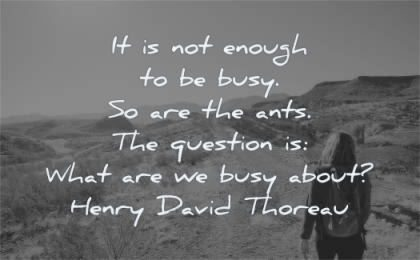 focus quotes enough busy ants question what about henry david thoreau wisdom woman walk