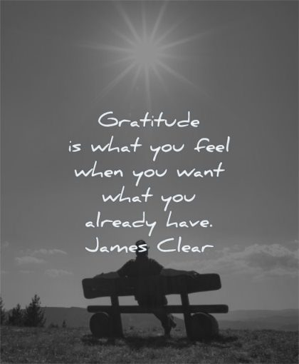 gratitude quotes what you feel when want already have james clear wisdom man sitting solitude sun sky