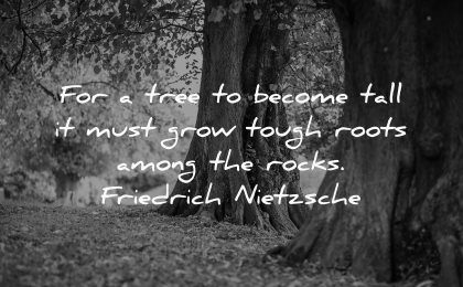 hurt quotes tree become tall must grow tough roots among rocks friedrich nietzsche wisdom nature