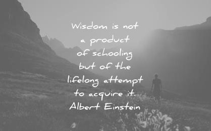 knowledge quotes product schooling lifelong attemps acquire albert einstein wisdom