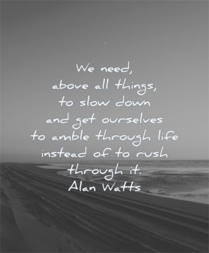 life changing quotes need above all things slow down get ourselves amble through instead rush alan watts wisdom beach sea