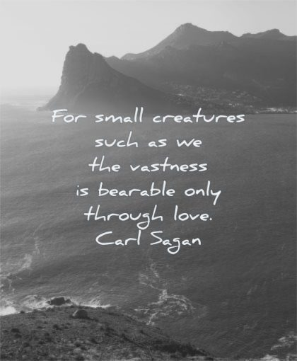 meaningful quotes small creatures such vastness bearable only through love carl sagan wisdom nature sea water mountains
