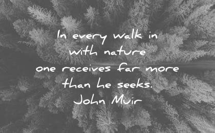 nature quotes every walk with one receives far more than seeks john muir wisdom