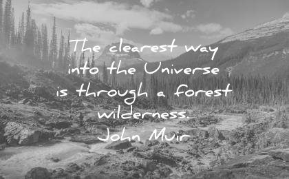 nature quotes clearest way into the universe through forest wilderness john muir wisdom