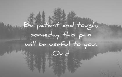 quotes about strength patient tough someday this pain will useful ovid wisdom