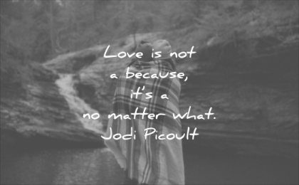 short love quotes not because its matter what jodi picoult wisdom
