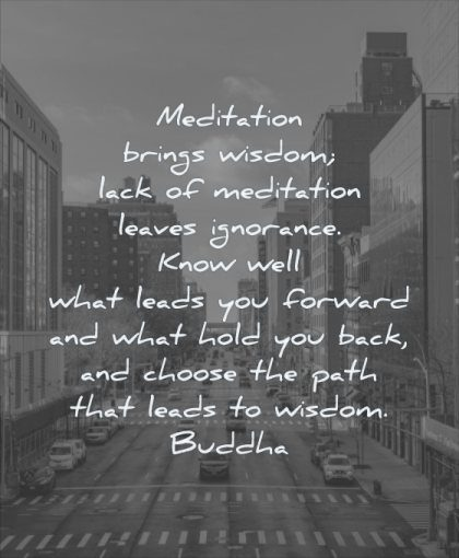 wisdom quotes meditation brings lack leaves ignorance know well what leads forward hold back choose path wisdom buddha city