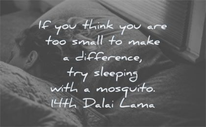 zen quotes think you are too small make difference sleeping mosquito 14th dalai lama wisdom bed woman